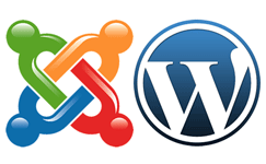 best web design company in trichy