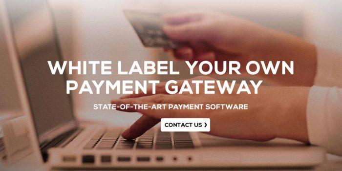 payemnt gateway integrations – ccavenue , payumoney , ebs , instamojo , paytm ,payubiz , paypal , skrill , chekout , stripe , amazon pay , google check out ,direct bank gateway like icici , axis , yes bank etc..