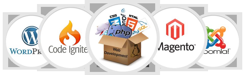 web-development-trichy