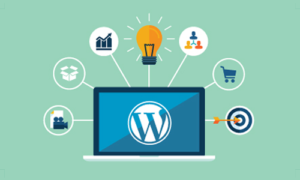wordpress-development-trichy